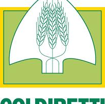 """Coldiretti: """"Il prezzo del grano sorpassa quello del petrolio"""""""