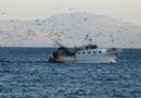 Nella Giornata mondiale della pesca un pensiero ai marinai sequestrati in Libia